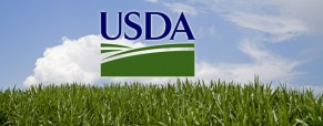 El USDA tiró los precios agrícolas a un abismo