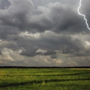 El USDA y el clima en EE.UU. ayudan a los precios