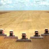 Por la expectativa de cambio de Gobierno repunta la venta de campos