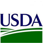 La previa del USDA