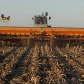 Bajos precios para la soja que se cosecha
