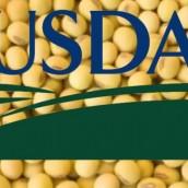 Para el USDA menos soja y maíz en el 2015