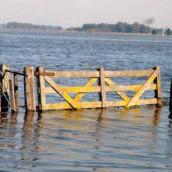 Inundaciones: derribando mitos y aclarando dudas