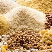 El mercado agrícola espera las primeras proyecciones 2014/15