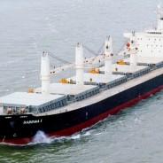 Crece 2,6% el comercio marítimo mundial y Argentina 27% en el despacho de granos