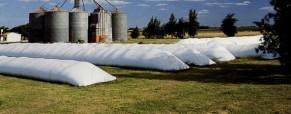 Agricultores de Estados Unidos apuestan al silo bolsa para guardar la nueva cosecha