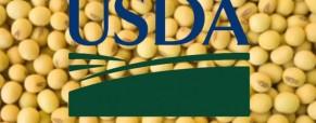 Sorpresa en datos del USDA presiona más a la soja